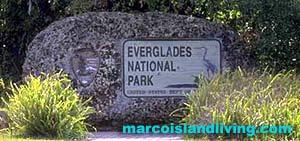 Everglades Vacations, Everglade Tours, Florida Everglades, Everglades National Park, FL Everglades, Everglade Boat Rides, Everglades Wildlife, Everglades Fishing, Everglades Nature Tours, Everglades Lodging, Everglades Attractions, Everglades Real Estate