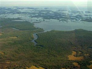 Everglades National Park Fishing Charters, Florida Backwater Fishing,