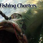 tarpon fishing charters