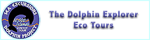 Dolphin Explorer Eco Tours, Marco Island Florida Attraction