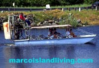 Everglade Boat Rides, Everglades Nature Tours, Everglades Manatee Tours, Everglades Fishing Tours, Everglades Nature, Florida Everglades Attractions