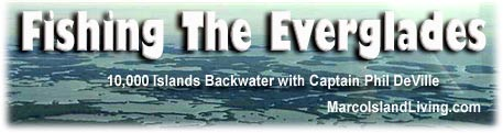 Everglades Florida Backwater Fishing Guide Phil DeVille