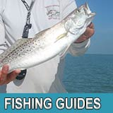 FL Fishing Guides
