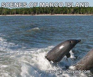 Scenes of Marco Island Florida Photo Slide Show